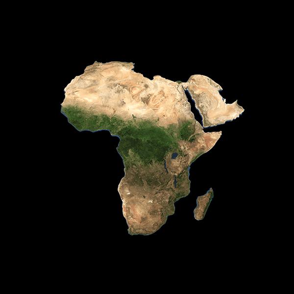 kawa z afryki